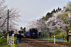 能登鹿島駅彩る季節