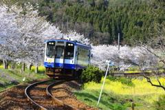 春を走るのと鉄道