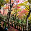 紅葉の丘五百羅漢