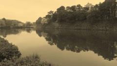 名古屋城 セピア 桜