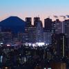 Fuji blend into the city