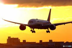 希望の翼・787