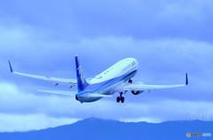 Blue Sky Blue・737