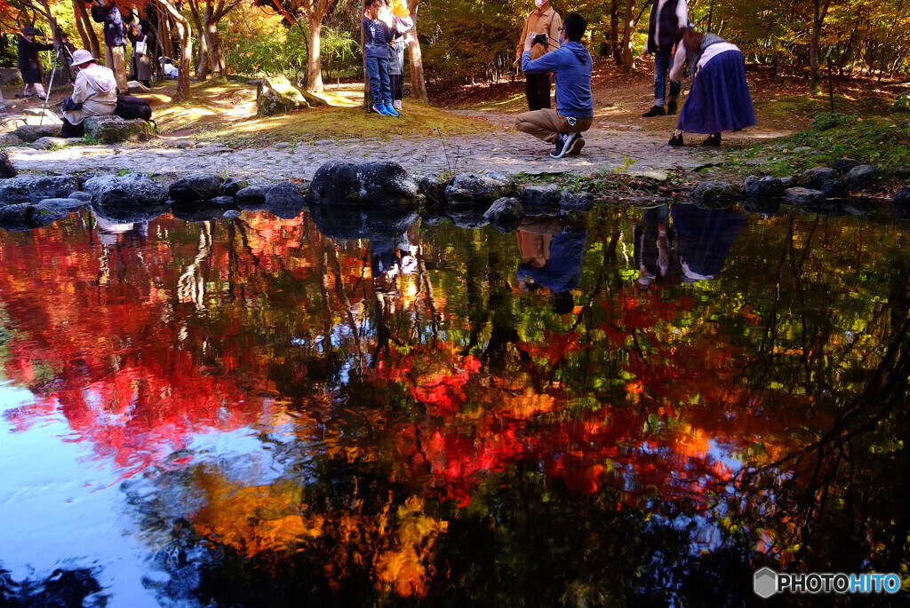 燃える秋✾霜月