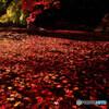 落葉の宴・REIWA