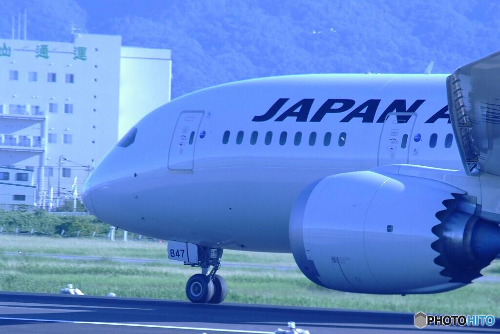 September Morning・JAPAN