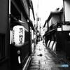 雨の京都☂先斗町