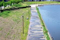 池辺の遊歩道-1