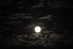 満月に漂う雲