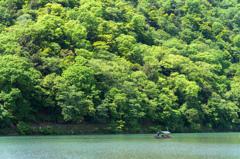 新緑 嵐山