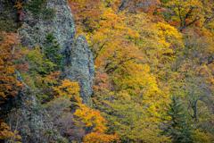 渓谷の秋Ⅱ