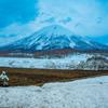 羊蹄山、麓の春