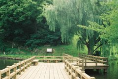 乙女湖公園