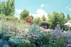 秘密の花園2