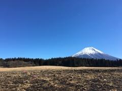 富士の魅力
