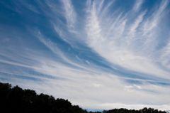 秋の空...巻層雲