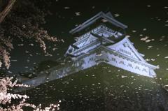堀に浮かぶ城と桜
