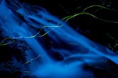 Blue Mountain stream