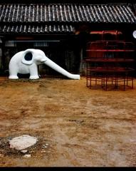象の居る家