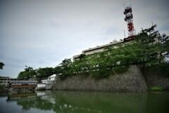 福井県城。
