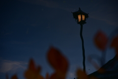 闇夜の騎士。