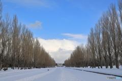 冬のカナール