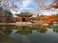 日本風景1286 紅葉