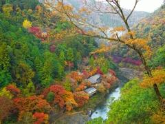 日本風景1262 秋