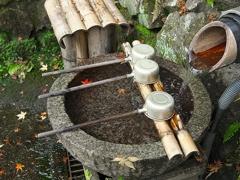 日本風景1306 手水舎
