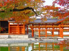 日本風景1278秋