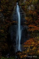 滝(白布の滝)