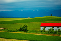 赤い屋根と赤いトラクター