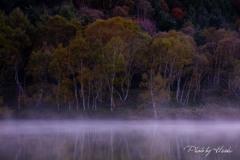 秋探訪(木戸池)
