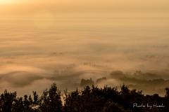 濃霧の夜明け