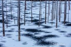 自然湖冬景色3