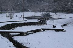 めずらしく雪景色
