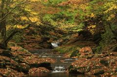 マゼノ渓谷の紅葉
