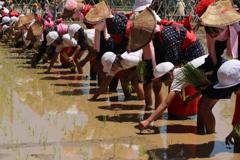 野原神社祭