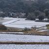 私の村の雪景色