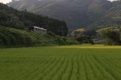 鹿児島本線走ってます!