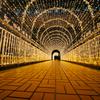 豊田駅前光のトンネル
