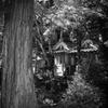 海住山寺三社(京都南山城)