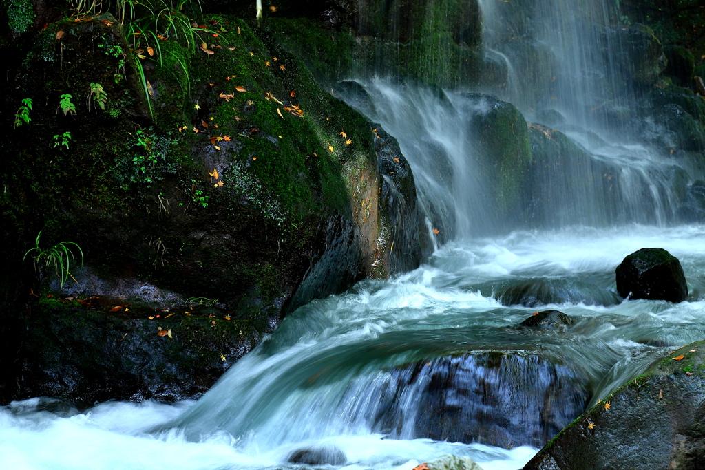 渓流の旋律