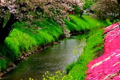 川辺の彩香