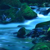 緑陰の流水