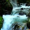 渓流の音色