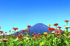 7月の富士