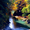 秋彩の溪谷