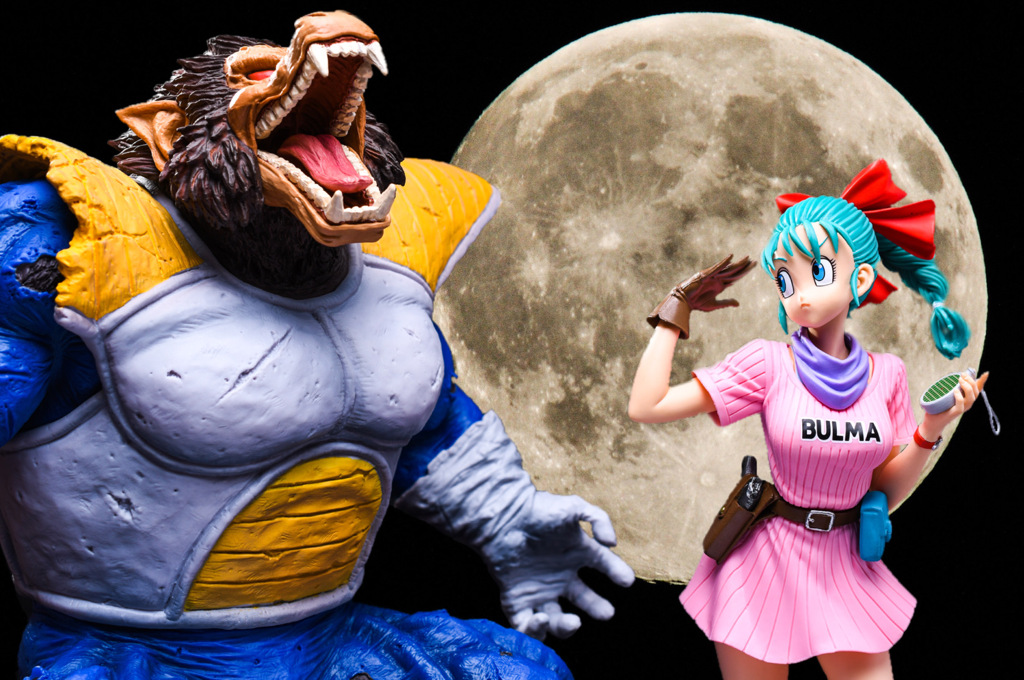 大猿ベジータ & ブルマ