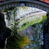 下賀茂神社 御手洗池